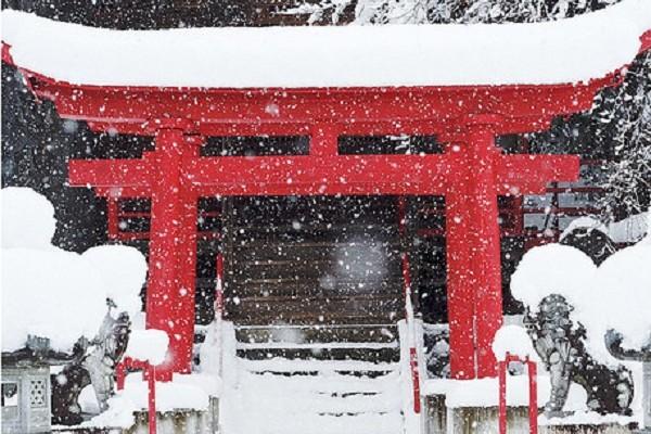 初詣はパワースポットに!子連れで楽しむ関東編