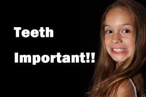 歯並びが良い乳歯は危険?今からできる丈夫な永久歯作り