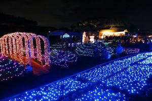 【神奈川県】第8回辻堂海浜公園イルミネーションイベント