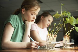 リビング学習は要注意!子どもに『学習机』が必要な5つのワケ