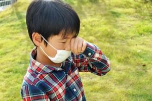 くしゃみ鼻水…それって『ダニアレルギー』かも!秋こそ対策を!
