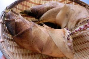 毎日でも食べたい!春のタケノコ『変り種レシピ』