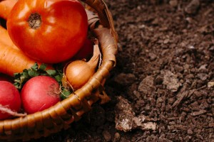 実は春が食べどきの『トマト』。おいしい食べ方を抑えておこう