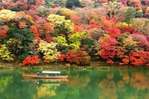 親子で紅葉を見に行こう!子連れで行けるオススメ紅葉スポット【関西編】
