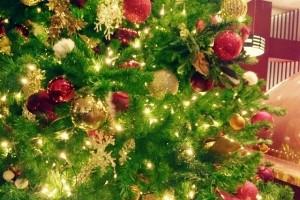 5歳の男の子が亡くなった神宮外苑火災事故…クリスマスツリーの電飾も危ない!?