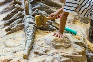 子供の探究心をくすぐる!化石発掘体験ができるスポットとおすすめ知育玩具まとめ