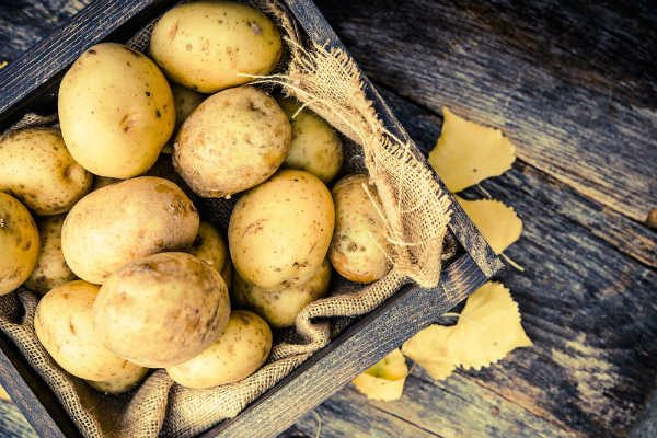 ビタミンCの量はレモン1個分!?『新じゃがいも』をおいしく食べるレシピ4選【季節の食材を使ったおすすめ料理VOL.04】