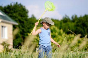 昆虫採集に必要な持ち物は100均で揃う!持ち物と注意点